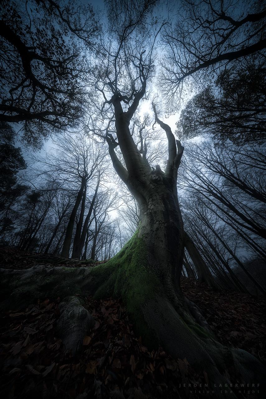 A-ghostly-ritual